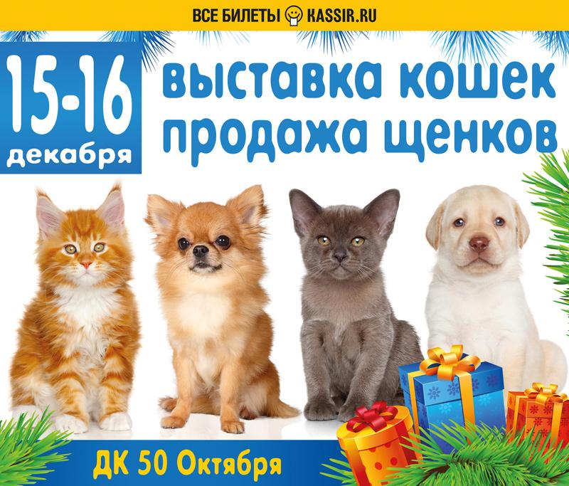 выставка-продажа щенков