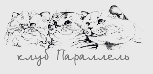 клуб любителей кошек Параллель Воронеж